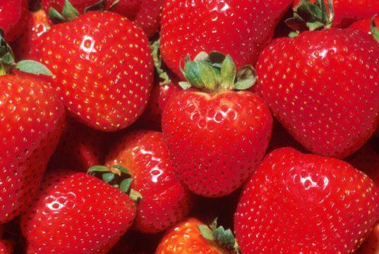 strawberry
