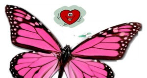 val butterfly