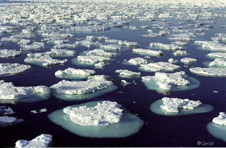 Is Antartica Really Melting and its impact
